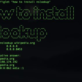 How to install nslookup on Raspberry Pi